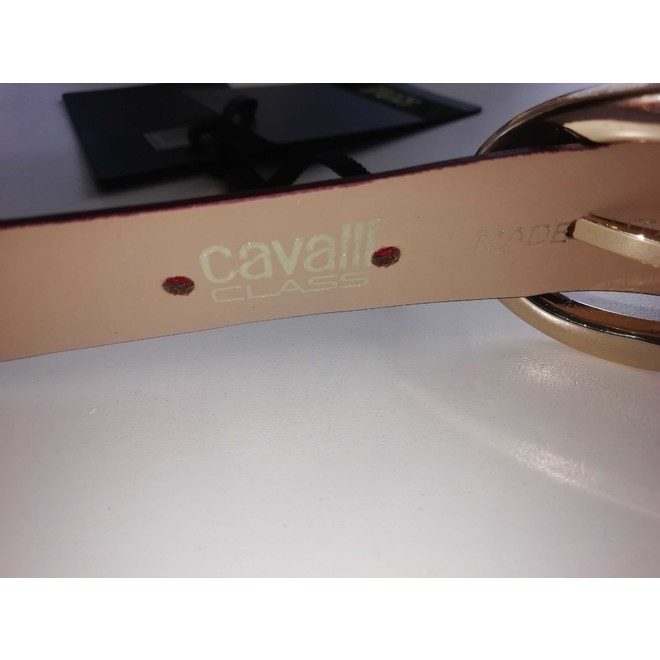 tweedehands Cavalli Riem
