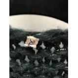 tweedehands Kiro by Kim Vest
